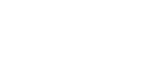 Logo In'Pulse